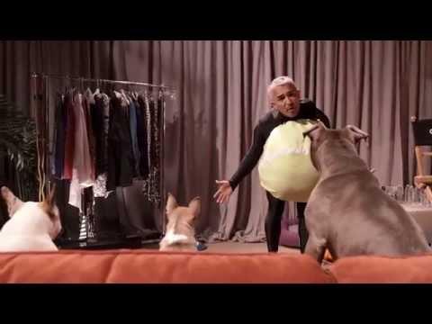 Cesar Millan: Viva Las Vegas! Hilarious Deleted Scene featuring Cesar's Pack