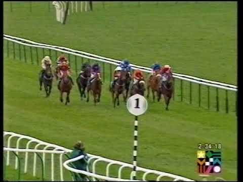 2002 Graham Frost Median Auction Maiden Fillies' Stakes