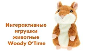 Интерактивные игрушки животные Woody O'Time