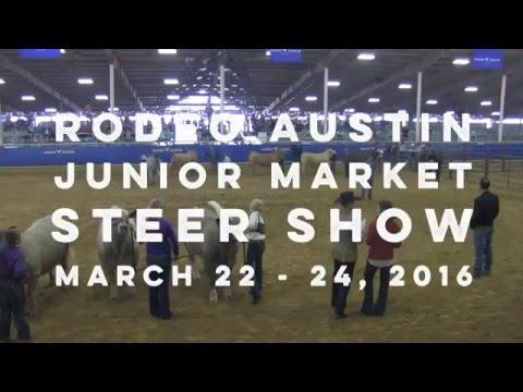 2016 Rodeo Austin Junior Market Steer Show