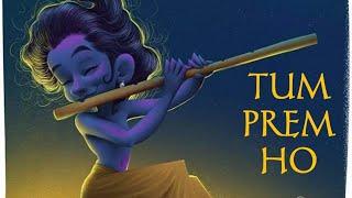 Tum Prem Ho Tum Preet Ho || Radhe Krishna Serial Song