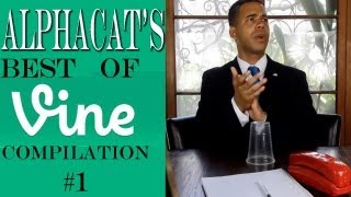 Alphacat's BEST OF VINE COMPILATION #1