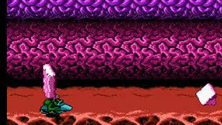 Levels From Hell Battletoads NES Stage 3