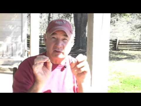 The Fading Cajun Culture (Part III)