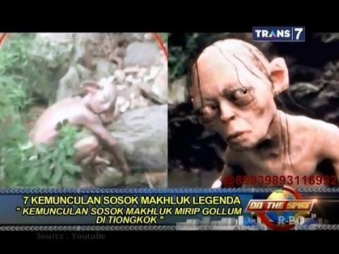 On The Spot - 7 Kemunculan Sosok Makhluk Legenda