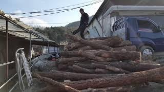 장작용 원목 나무 40만원어치 구경한번하세요~^^.