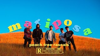 Download Lagu Peach Tree Rascals - Mariposa MP3