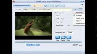 [FREE DOWNLOAD] Moyea SWF to Video Converter PRO