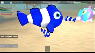 I'm a Little Fishy!| Aquarium Simulator| Roblox Minigame