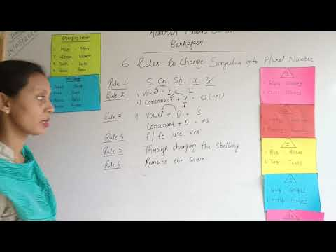 Rules To Change Singular Into Plural Number By Nilu Kumari