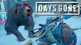 Days Gone Gameplay German 12   Der Bär Macht Mich Fertig