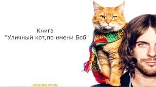 "Book trailer на книгу ""Уличный кот, по имени Боб"""