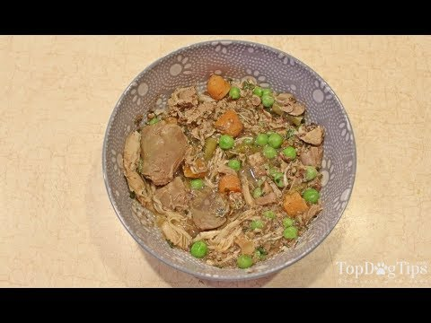 Balanced Homemade Dog Food Recipe