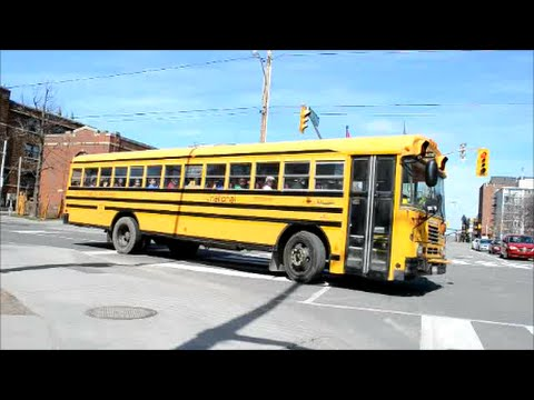 CANADIAN SCHOOL BUSES IN ACTION IN OTTAWA & MONTREAL
