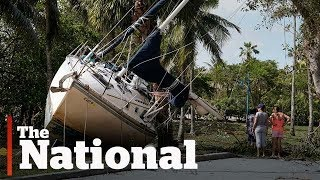 Cleanup efforts underway in Miami after Hurricane Irma