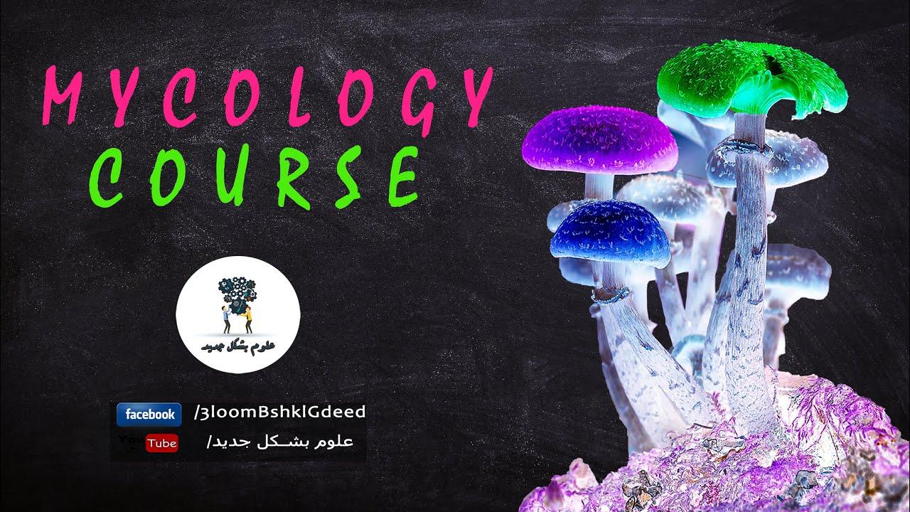 Download سلسلة محاضرات كورس علم الفطريات Mycology - محاضرة 1 (Definition and general characters)