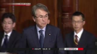 Japan's Lower House passes TPP bills