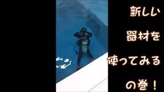 総合 http://cocomo.pro ダイビング http://cocomo.jp 法務 http://ccm....