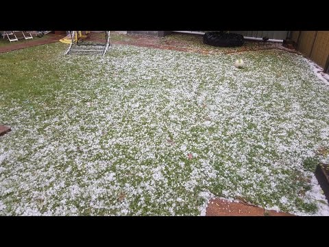 Insane 2 minute wind and hail storm at Parkes NSW