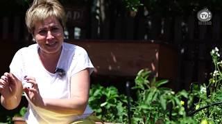 Как получить хороший урожай огурцов- Хитсад ТВ дача сад огород