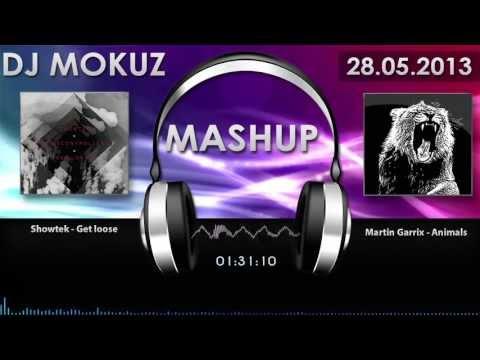 Martin Garrix VS. Showtek &...