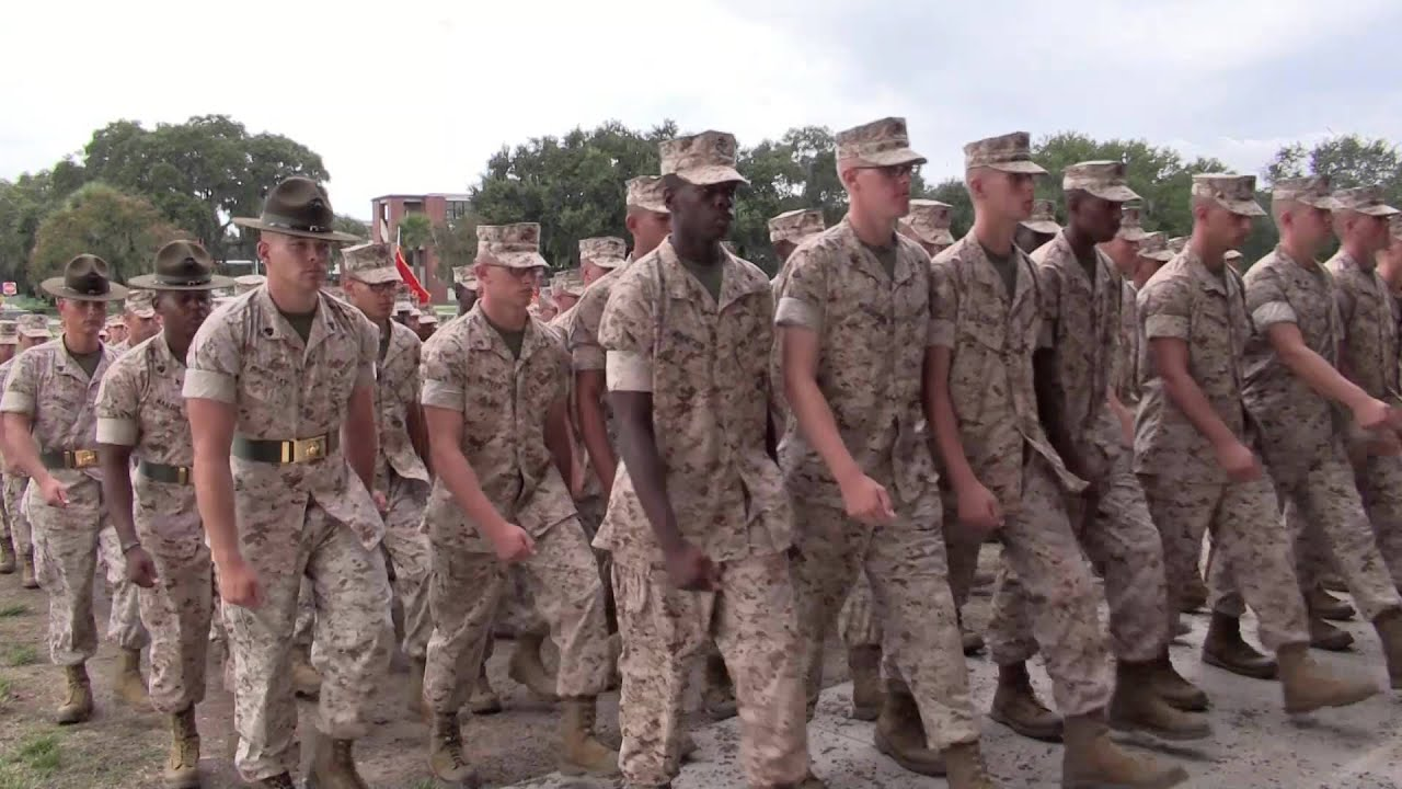 marines corps drill instructor
