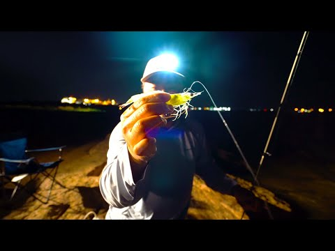 NIGHT JETTY FISHING With LIVE SHRIMP