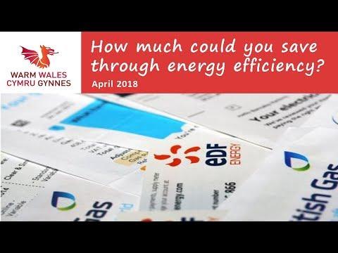 Saving Money through Energy Efficiency