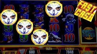 ★ GREAT SESSION★ On FAST CASH TIMBER WOLF, BUFFALO, WICKED WINNINGS, MISS KITTY Slot Machine