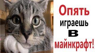 Лютые приколы. МАЙНКРАФТ СТИВ И АЛЕКС! СМЕШНЫЕ КОТЫ! РЖАКА ДО СЛЁЗ!– Domi Show