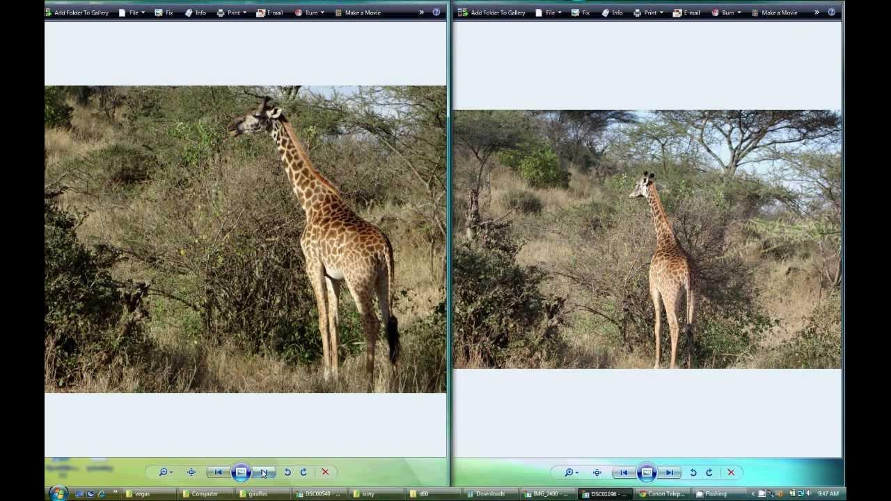 Camera Slr Camera Vs Dslr Camera canon eos dslr best digital slr camera reviews 60d vs sony dsc hx200vdsc hx300 point