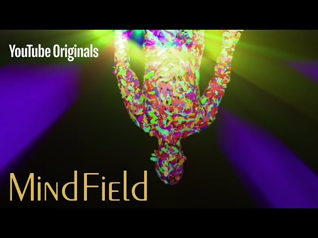 The Psychedelic Experience - Mind Field S2 (Ep 2)