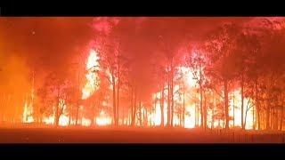 Centrix - Australian Bushfires (Hardstyle) |