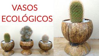 Vasos Sustentáveis Feito de Casca de Coco – Lindos e Ecológicos