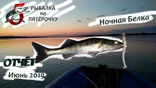 Ночная Белка Отчёт о рыбалке на Белоярском водохранилище июнь 2019