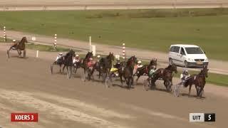 Vidéo de la course PMU PRIX COUP DROIT (TROTTEUR FRANCAIS GOLDEN CHALLENGE)