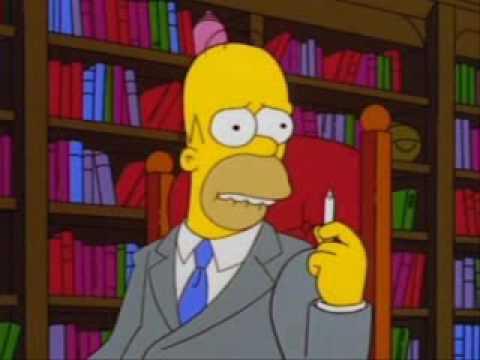 Homer Simpson Because I Got High