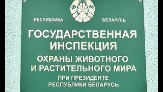 Инспекторы напоминают про усиление ответственности за незаконную рыбалку и охоту. 02 12 2014  1