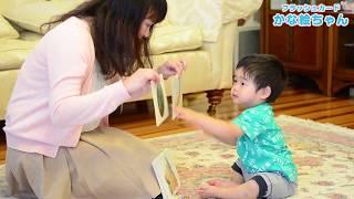 幼児期から幅広い知識を大量・高速フラッシュでインプットすることで、 ...