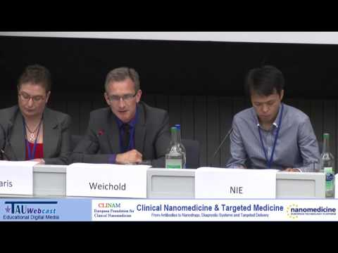 Panel - The Regulation Environment in Nanomedicine -- The Step to the Last Phase of Translation