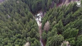 In volo verso nuove stagioni| Monte Cimone-Aprile 2017