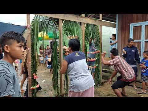 Acara Pernikahan, Adat Suku Dayak Ngaju Di Tumbang Marikoi, GUMAS, KALTENG