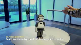 [LIKU robot] Sound recognition Tech