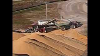 How do they get the corn from the pile to the truck?