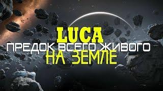 ПРЕДОК всего живого на Земле LUCA