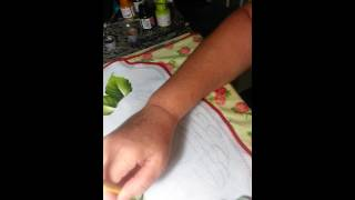 Como pintar cesta com hortencias e maçãs – parte 1