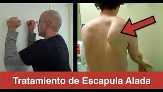 Tratamiento de Escapula Alada (Serrato Anterior) - Dolor de Espalda Media
