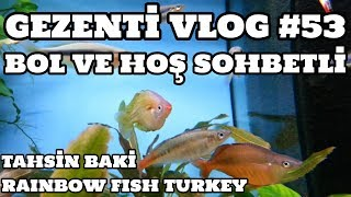 Gezenti Vlog #53 (Rainbow Fish Turkey) [Tahsin Baki]