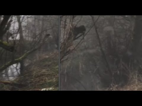 Stranger Zone - Ghost Filmed on Haunted Trail