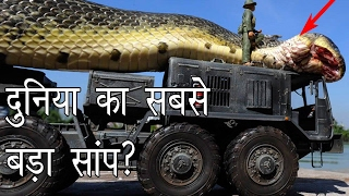 दुनिया का सबसे बड़ा साँप | Largest Snake in the World | Hoax or Real? | Hoax Hunting Episode 2